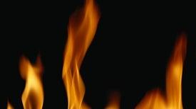 Heat Sensor Has Snaky Sensitivity