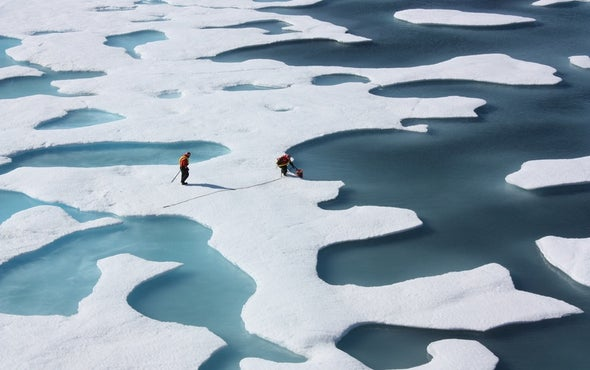 Five Years of Record Warmth Intensify Arctic's Transformation