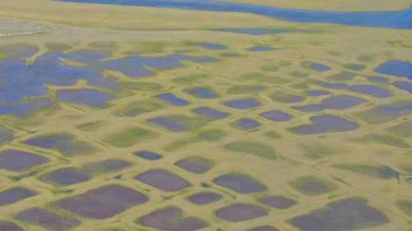 Here's How Much of Alaska's Permafrost Could Melt