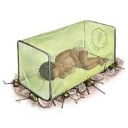 A Better Mosquito Net