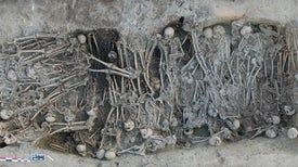 Teeth Tell Black Death Genetic Tale