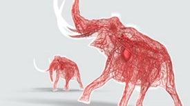 Ancient DNA Research Revolutionizes Scientists' Understanding of Extinct Animals