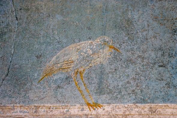 Volcanic Ash Threatens Pompeii's Buried Murals