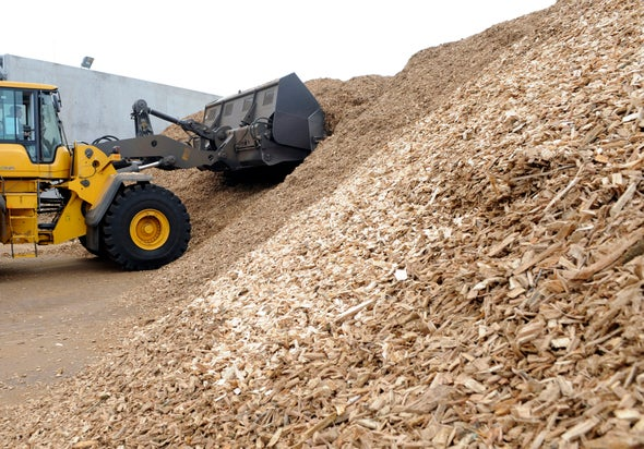 Congress Says Biomass Is Carbon-Neutral, but Scientists Disagree