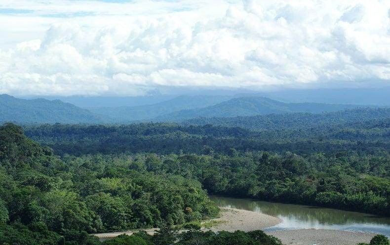 Ecuador Begins Drilling Oil in a Pristine Corner of the Amazon