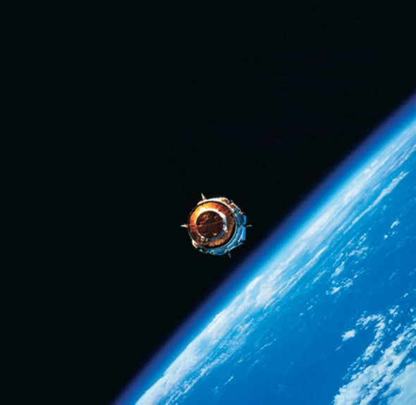 DNA Can Survive Reentry from Space