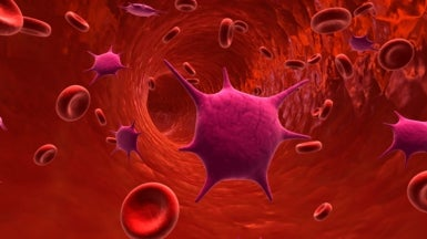 Disguised Nanoparticles Slip Past Body's Immune Defense