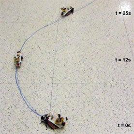 robot, cyborg, roach, rescue