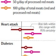Perils of Processed Meat,