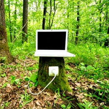 Green Tech Wilting Under Patent Office Scrutiny