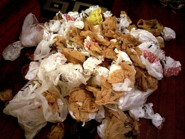 Do Plastic Bag Bans Work?