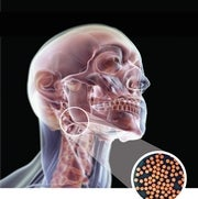 HPV Cancers in Men Take Off