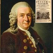 1735: