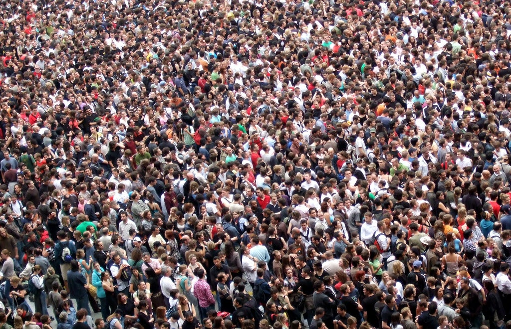 Hive Mind: New Approach Could Improve on Crowd Wisdom - Scientific American