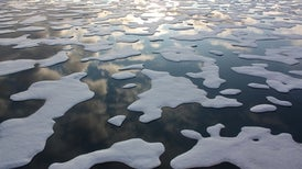 Arctic Makes Ice at Record Slow Pace