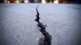 Fungi Can Help Concrete Heal Its Own Cracks