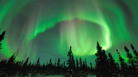Why Do the Northern and Southern Lights Differ?