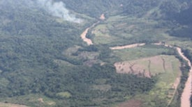 Is the Amazon Rain Forest Drying Out?