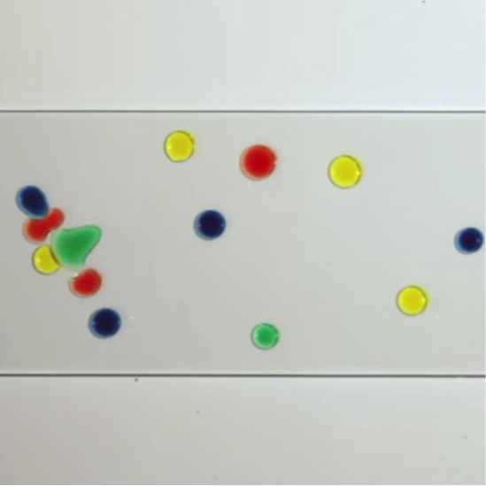 2 Common Liquids Spontaneously Form Dancing Droplets [Video]
