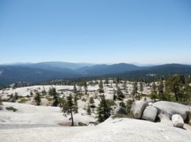 landscape image of short trees and granite in foreground with dense forests in background