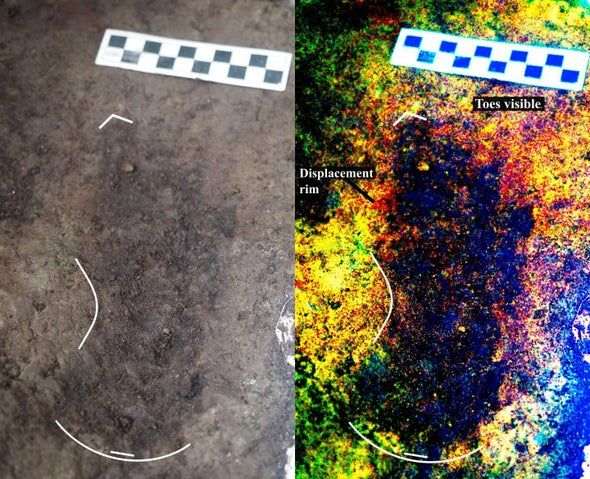 13,000-Year-Old Footprints under West Coast Beach