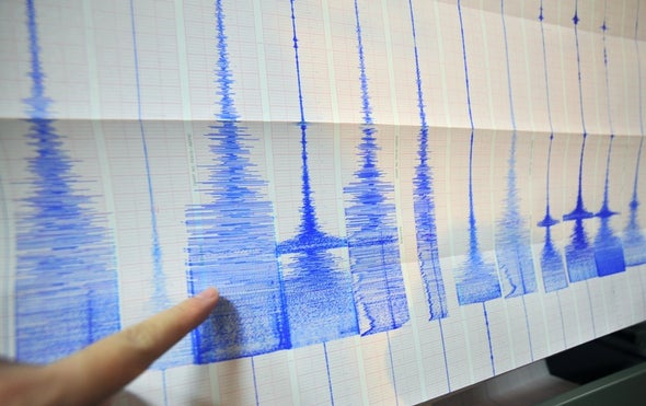 Dark Fiber Networks Can Sense Seismicity