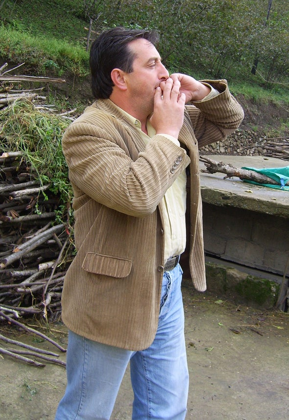 Whistled Language Forces Brain to Modify Usual Processing