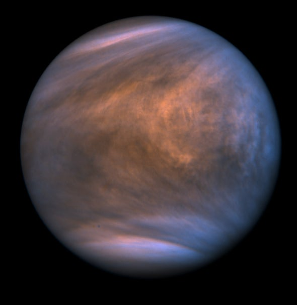 Venus Might Host Life, New Discovery Suggests