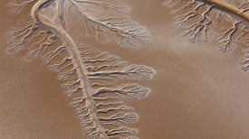 Water Returns to Arid Colorado River Delta