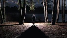 Are Sleepwalking Killers Conscious?