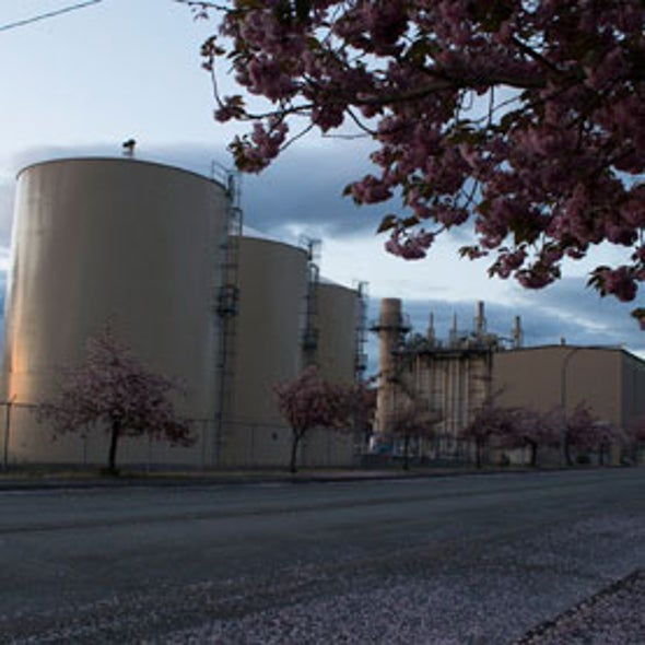 Switch to Natural Gas Slashes Power Plant Pollution