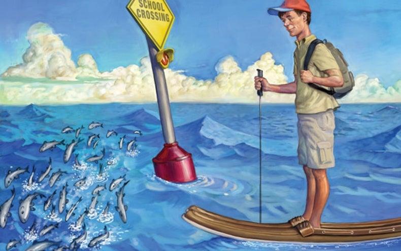Water Walker Wanders Worldwide