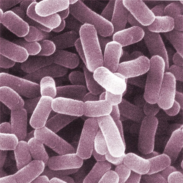 Drugs to Be Derived from Insights into Body-Dwelling Bacteria