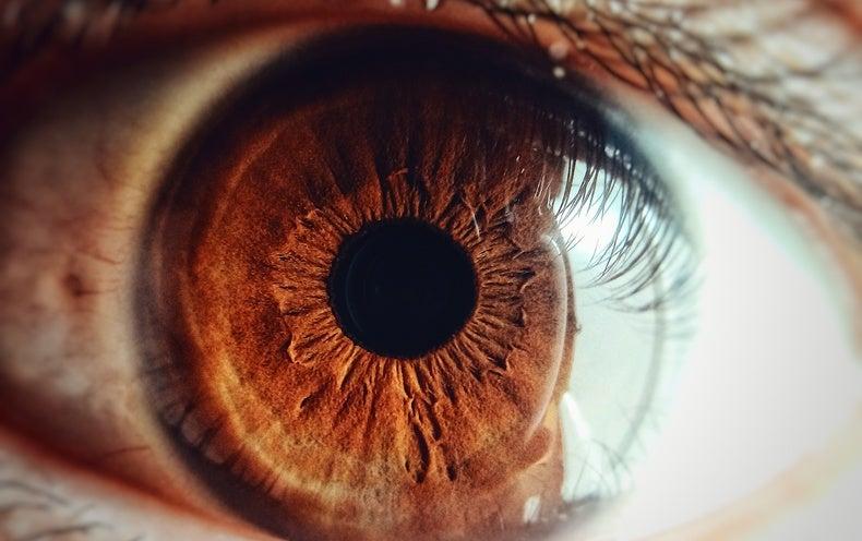 Meet the Eye Microbiome