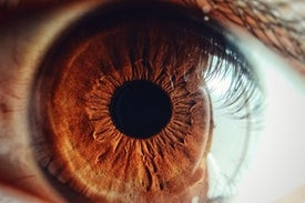 Meet the Eye Microbiome