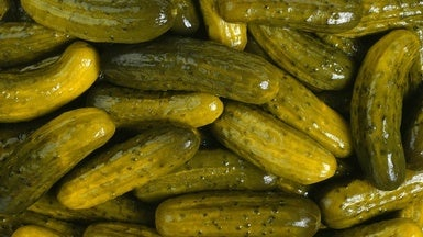 Fermented Foods Find Fervent Advocate