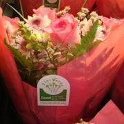 Blooms Away: The Real Price of Flowers
