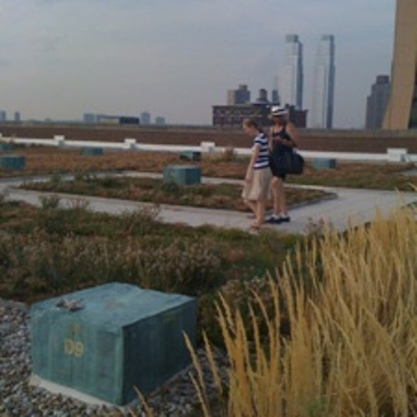 From Anthrax to <i>Allium</i>: Views from a New York Postal Facility's Green Roof [Slide Show]