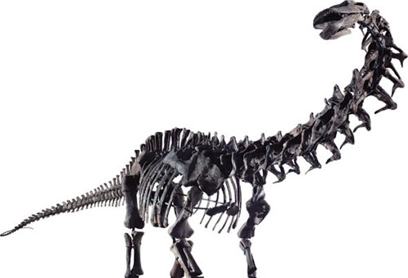 The Dinosaur Monsters We Adore