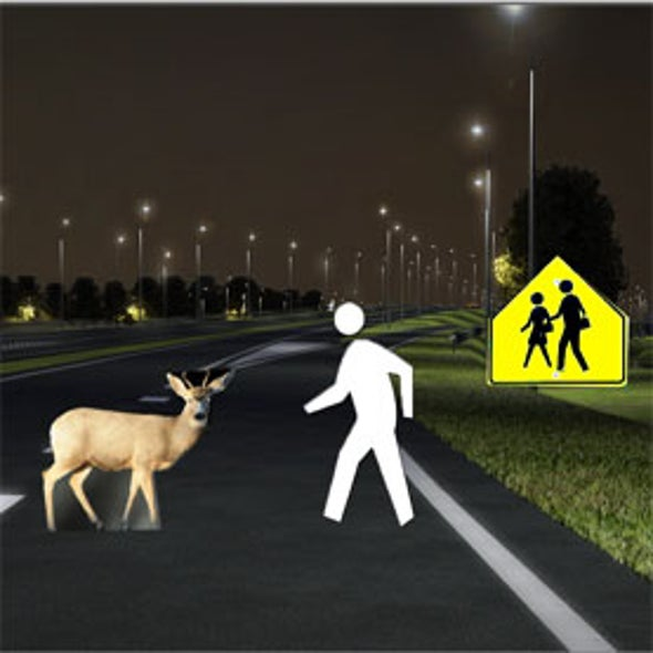 Adaptive Headlights Could Help Drivers Avoid Hitting Bambi [Video]