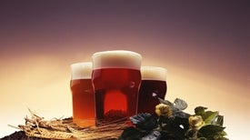 Beer Fermentation Hops Along