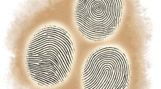 Succession Science: Are Fingerprint Patterns Inherited?