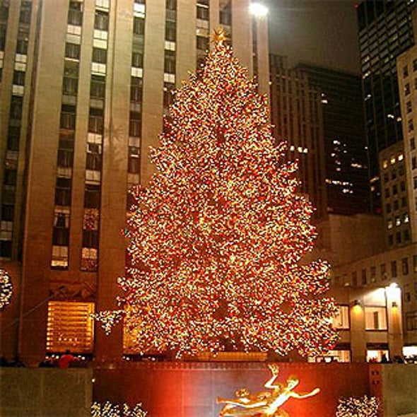 what happens to the rockefeller center christmas tree after the holidays
