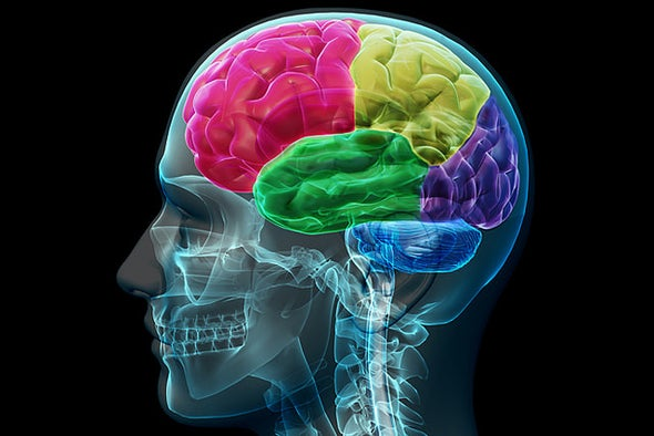 The <i>Opposite</i> Side of the Brain to a Clot Is Key to Stroke Rehabilitation