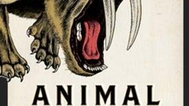 Animal Armaments: Evolution Girds Species for Battle [Slide Show]