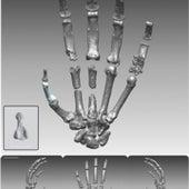 MORE HUMAN HANDS