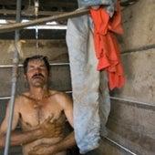 Tobacco Worker: