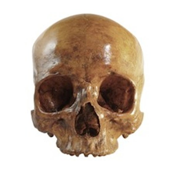 Early Humans Used Brain Power, Innovation and Teamwork to Dominate the Planet