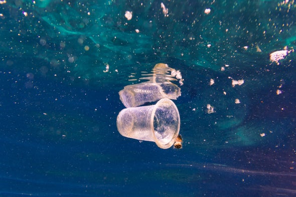 The Deep Ocean Harbors a Mountain of Microplastic Pollution