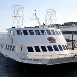 Recreational Boat Motors Get Greener with New EPA Emission Standards